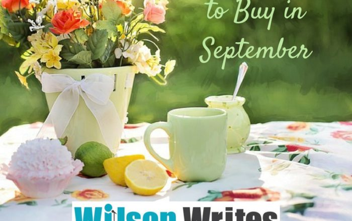 The Best Stuff to Buy in September | Wilson Writes